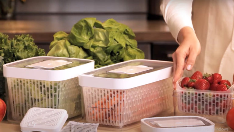 Top 3 Best Lettuce Keeper 2021 (Reviews & Buying Guide)